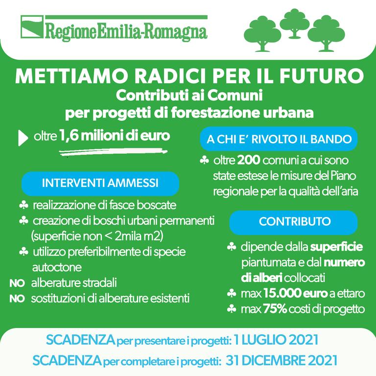 Mettiamo radici per il futuro: contributi ai Comuni per progetti di forestazione urbana