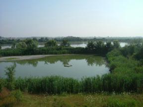 foto: veduta dell' oasi-Val di Sole (Archivio Provincia di Modena)