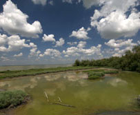 Foto: la penisola di Boscoforte (autore Milko Marchetti)