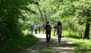 Foto: escursionisti al Parco regionale Laghi di Suviana e Brasimone (autore: MV Biondi)