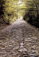 L'antica via Vandelli: strada carrozzabile completata verso la metà del Settecento - Archivio Parco
