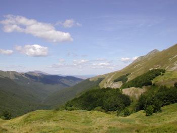 foto: Val d'Ozola - autore F.Ferretti - archivio Parco