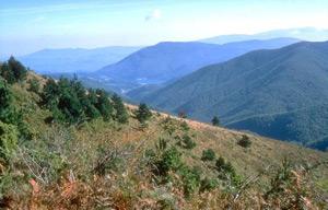 La valle del Brasimone - autore A.Mauri
