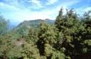 foto: veduta di Monte Calvi - autore A.Mauri