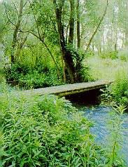 foto apertura Parco regionale  fluviale Taro