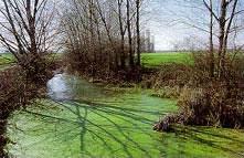 foto: laghi del Monte - autore L.Gilli