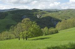 Una veduta dell'oasi dei Ghirardi - autore Guido Sardella
