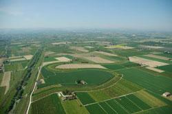 foto: Anse del Fiume Santerno abbandonato (dx) e quelle del Santerno vivo (sx).(Autore Arturo Colamussi)