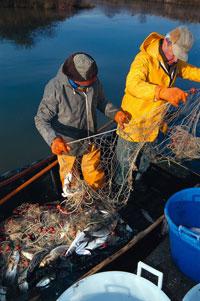 Foto: due pescatori (autore A. Rebucci)