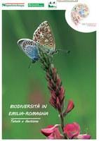 Brochure UE 2015