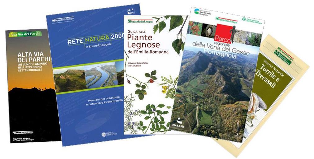 Copertine pubblicazioni