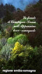 Copertina Le foreste di Campigna-Lama