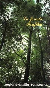 Copertina La foresta Panfilia o bosco di S. Agostino
