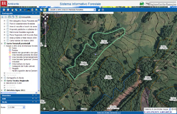 Cartografia interattiva delle foreste regionali