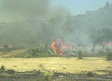 Incendio di margine da coltivo, propagato su arbusteto. Foto Lorenzo Bassi, archivio personale