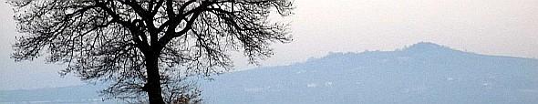 Cerro isolato in prima collina. Foto Stefano Bassi, archivio personale