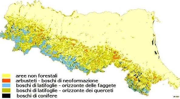 Mappa dei macrotipi forestali in Emilia-Romagna rappresentati in base alla cartografia dell'Uso del Suolo