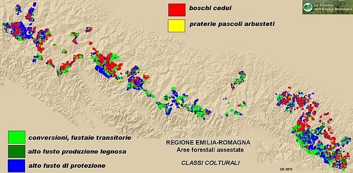 Superfici assestate - mappa delle classi colturali