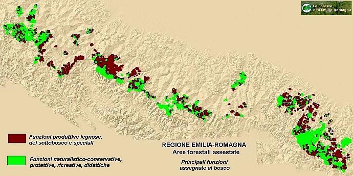 Superfici assestate - mappa delle funzioni del bosco