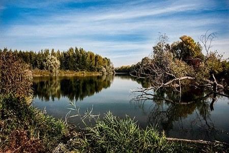 Foto bosco ripariale in autunno (fonte Pixabay).jpg