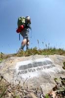 Alta Via dei Parchi: tappa 7, tra Alpe San Pellegrino e Cimetta (foto: autore Francesco Grazioli)