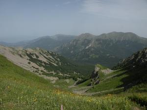 Valle dell'Inferno (sullo sfondo M. Alto e Alpe di Succiso).