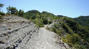 Crinale sentiero Marradi