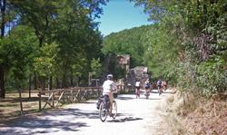 Foto: un gruppo di ciclisti vicino ai resti della chiesa di Casaglia (autore: Monte Sole Bike Group)