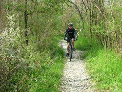 Foto: percorso ciclabile zona Bocca (archivio Parco)Stirone