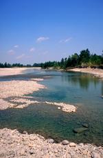Foto: scorcio dell'ambio greto ghiaioso del fiume Taro (autore Bianca Maria Rizzoli)