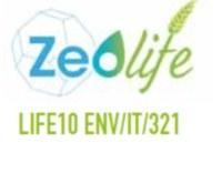 Logo ZEOLife