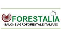 A Piacenza Forestalia 2021, l'appuntamento per chi lavora nei boschi