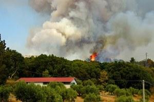 Avvio della fase di attenzione per gli incendi boschivi