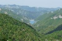 """Foreste Casentinesi ammesse nella """"Green list"""" dei parchi più importanti del mondo"""