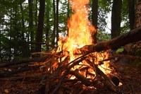 """Incendi boschivi: continua fino al  30 settembre la """"fase di attenzione"""" in tutta la regione"""