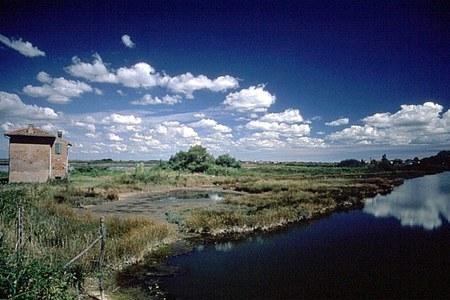 Parchi, dalla Regione 4,5 milioni di euro: biodiversità, turismo e ambiente