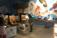 Questa settimana riaprono musei e parchi del circuito AmaParco. Ripartono pedalate e giornate in natura