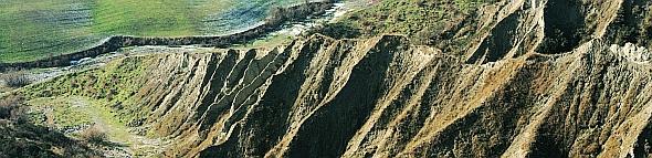 Aggruppamenti erbacei su formazioni calanchive: habitat 6220 e 6210. Foto Stefano Bassi, Cheilanthes - Viaggio botanico in val Sintria, di Sandro Bassi, 2004