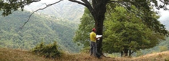 Consultazione cartografica in campo. Foto Stefano Bassi