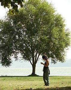 www...linkati anche tu. Foto Stefano Bassi, archivio personale