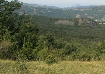 515 La rupe di Monte Gurlano circondata da estese cerrete. Foto archivio Provincia di Bologna