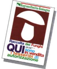 Logo_tessera.jpg