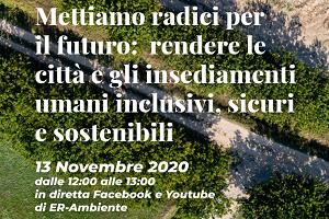 Webinar 13 novembre 2020