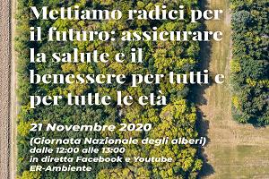 Webinar del 21 novembre 2020