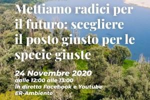 """Mettiamo radici per il futuro, il 24 novembre il webinar """"Scegliere il posto giusto per le specie giuste"""""""