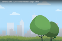 """Online tre video infografiche animate per saperne di più sul progetto """"Mettiamo radici per il futuro"""""""