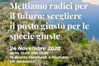 Scegliere il posto giusto per le specie giuste (webinar del 24 novembre 2020)