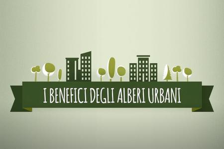 I benefici degli alberi urbani a cura della FAO