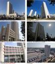 Immagini Terza Torre
