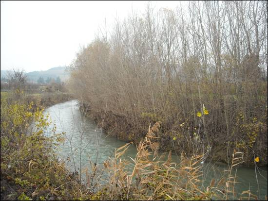 fiume lamone - sarna